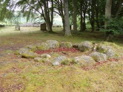 The Kerb Circle where the Essence signature was received, looking towards the the south west cairn, beneath the Tree Guardians of this special site.